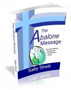 The Abalone Message original cover designed by David Valentin. Author Sally Streib.