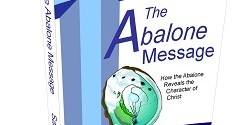 The Abalone Message original cover designed by David Valentin. Author Sally Streib.