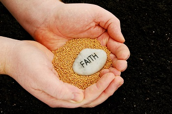 Image of seeds of faith in the workplace.